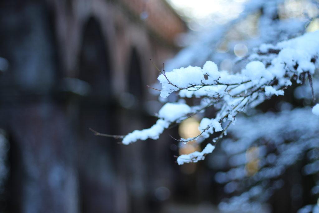 冬の南禅寺