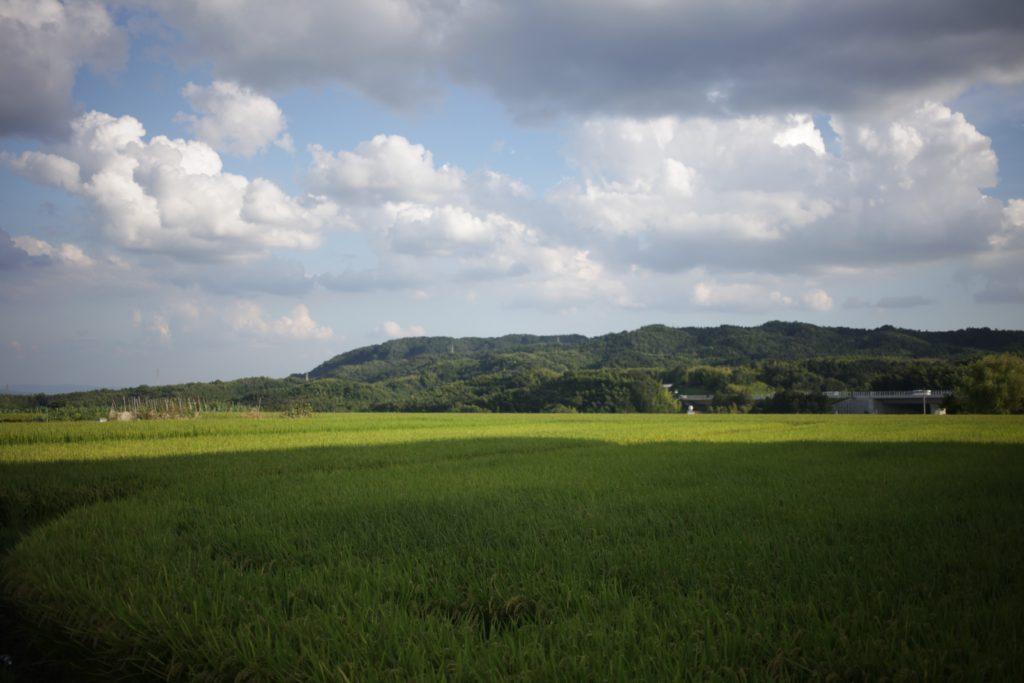 洛西の風景