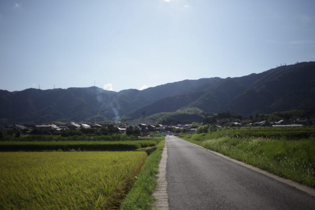 京都大原野